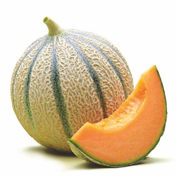Mel n cantaloup ecol gico gazpacho zumo de tomate for Melone charentais